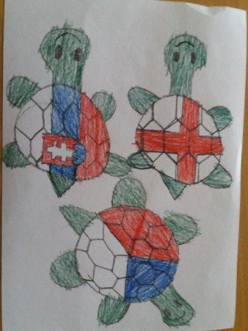 Světový den želv
